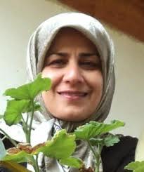 """Fatemeh Sagharchi, Lektorin der Website """"Jamaran"""", gehört zu den Verhafteten"""