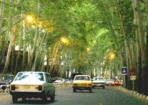 Teheran war einst als Stadt der Platanen und vielen Gärten bekannt!