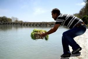 Das Sabzi wird der Natur zurückgegeben