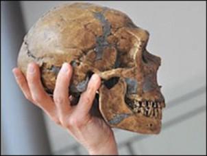 Ersten Hinweis auf eine mögliche Siedlung habe eine junge Archäologiestudentin entdeckt