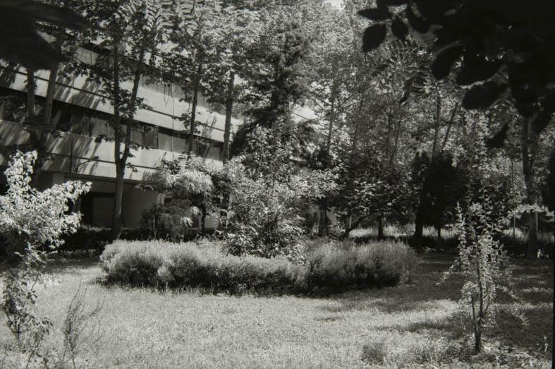 From ekbatan series, 2016, 16 x 21 cm, B&W negative 135mm Ein anonymer architektonischer Stil, Betonbauweise, austauschbar und überall auf der Welt in fast identischer Weise zu finden. Die Idee des Moduls, in Ekabatan mit Phasen bezeichnet, macht diese Art der Wohnraumbeschaffung unendlich reproduzierbar.