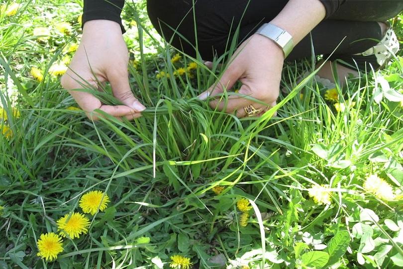 Traditionell wird im Iran das neue Jahr, das am 20. März beginnt, mit dem 13-tägigen Nouruzfest gefeiert. Am 13. Tag (Sizdah Bedar) ziehen die Familien in die Natur, um den Frühling willkommen zu heißen und zu picknicken. Nach dem Volksglauben bringt die Zahl 13 Unglück. Mit diesem Ausflug beabsichtigen die Menschen das Böse aus ihren Häusern zu vertreiben. Außerdem machen junge Menschen Knoten in die Grashalme, die ihre Wünsche symbolisieren. Sie erhoffen sich dabei, dass sie bis zum nächsten Sizdah-Bedar in Erfüllung gehen.