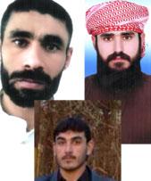 Oben: Jasem Moghaddam-Payam (li.), Ghazi Abbasi  - unten: Abdolreza Amirkhonafare
