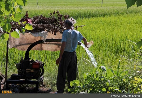 90 Prozent des Wasserverbrauchs im Iran gehen auf das Konto der Landwirtschaft, 22 Prozent mehr als im internationalen Durchschnitt!