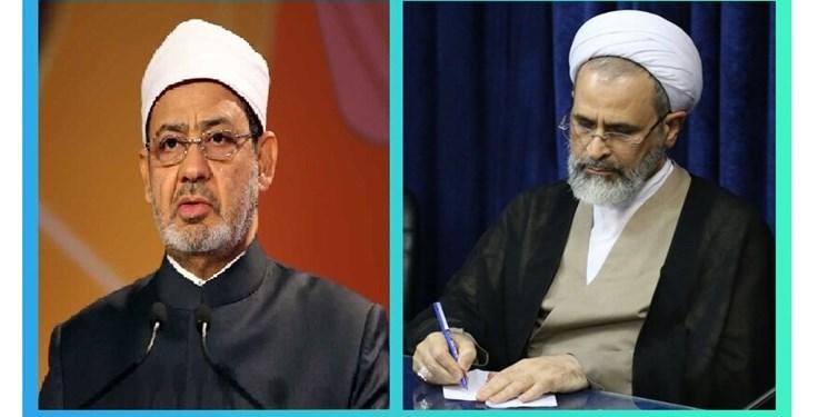 Ayatollah Alireza Aarafi (re.) und Scheich Ahmad Al Tayeb