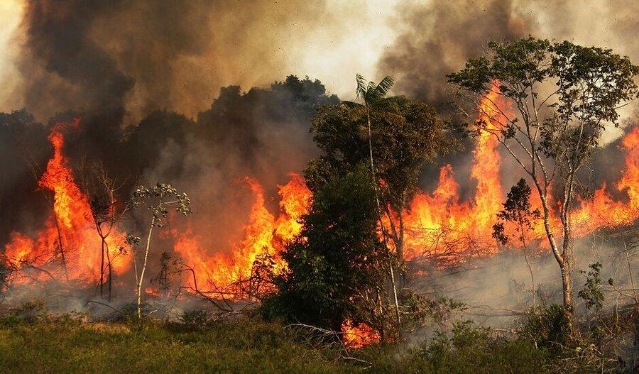 250 Hektar Naturschutzgebiet vom Feuer zerstört, Gachsaran, Löschhubschrauber, Khaeez